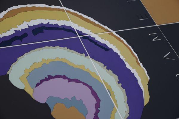 cutout-trametes-fungi226EC61EE1-005A-7E2F-D8C5-24640F8D494A.jpg