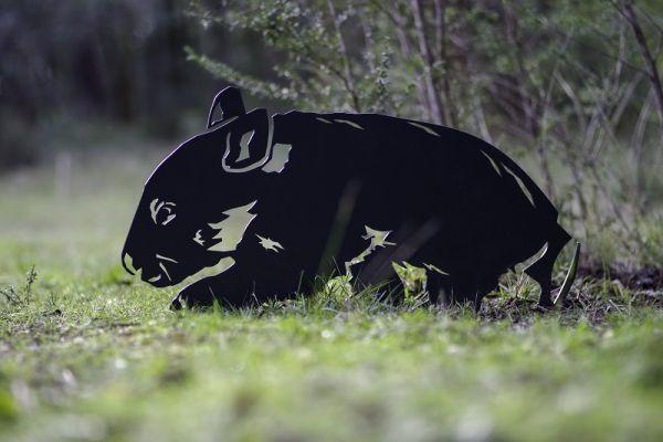 wombat-caution-marker321DDF25-3815-F563-1B4E-A12F96A3A2F7.jpg